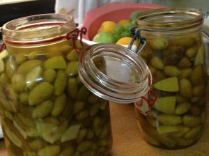 A First Batch of Olives